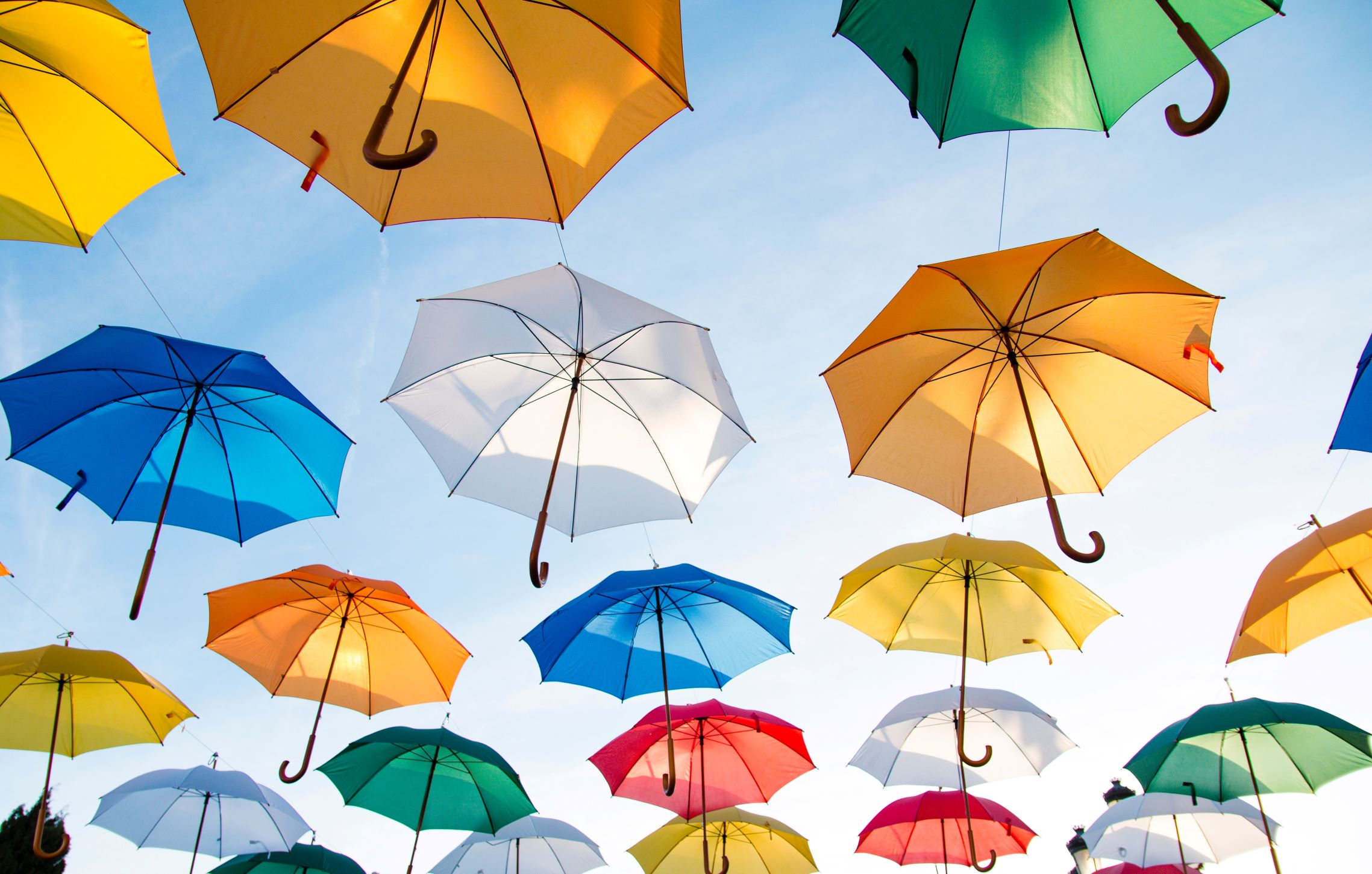 life insurance planning financial umbrellas policy